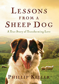 lessons-from-a-sheep-dog2